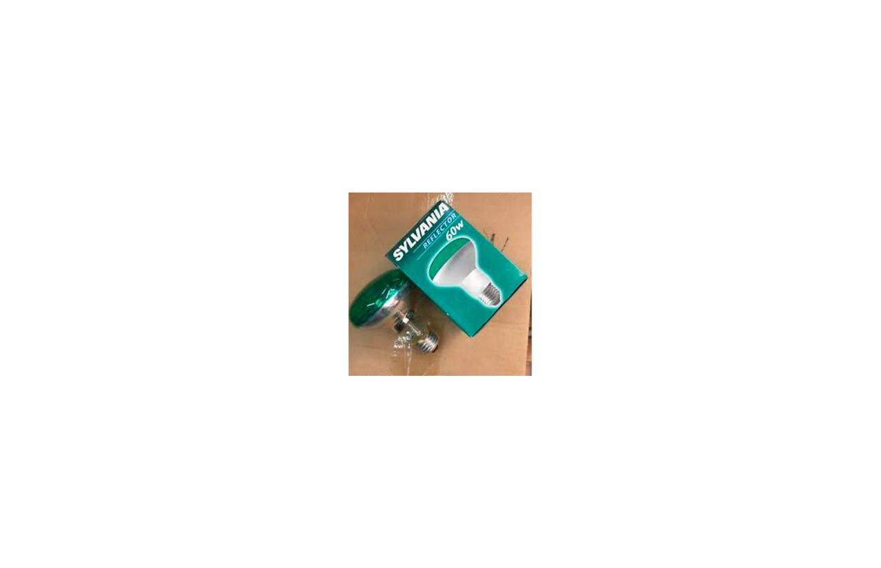 Lâmpada incandescente R80 verde E27 60W
