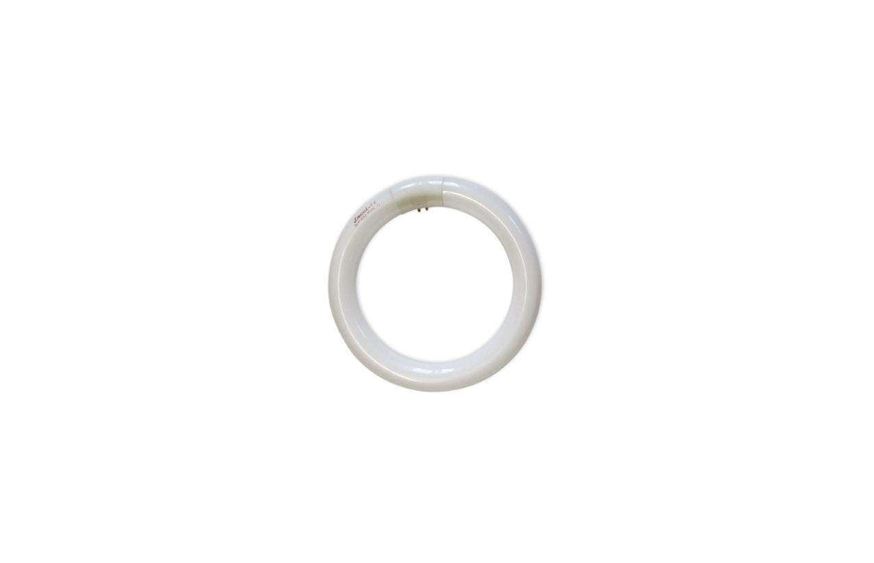 Lâmpada fluorescente T9 TL circular G10q 22W 6500K