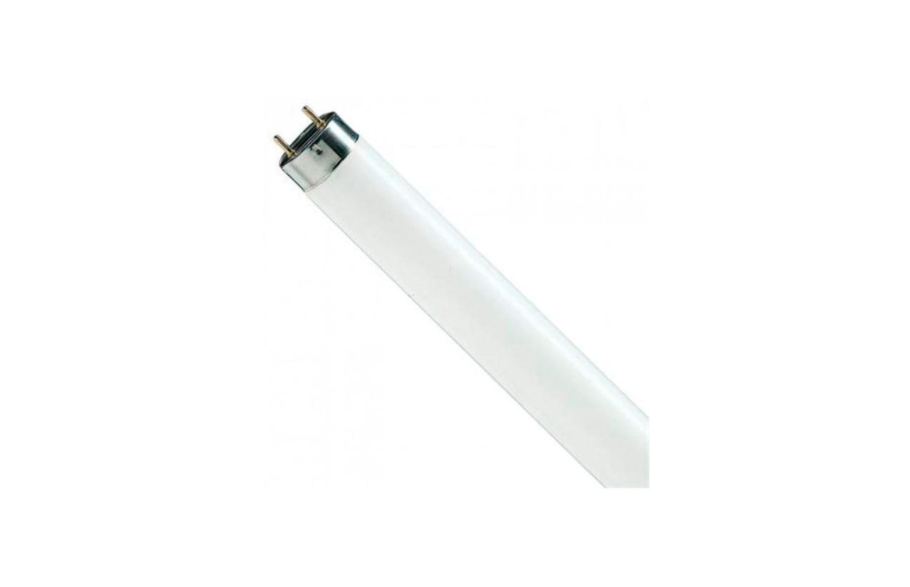 Lâmpada fluorescente tubular T8 36W 120cm 6500K (branco frio)