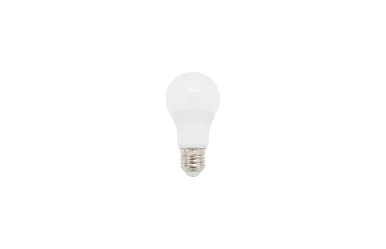 Lâmpada LED standard A60 E27 15W 6500K (branco frio)