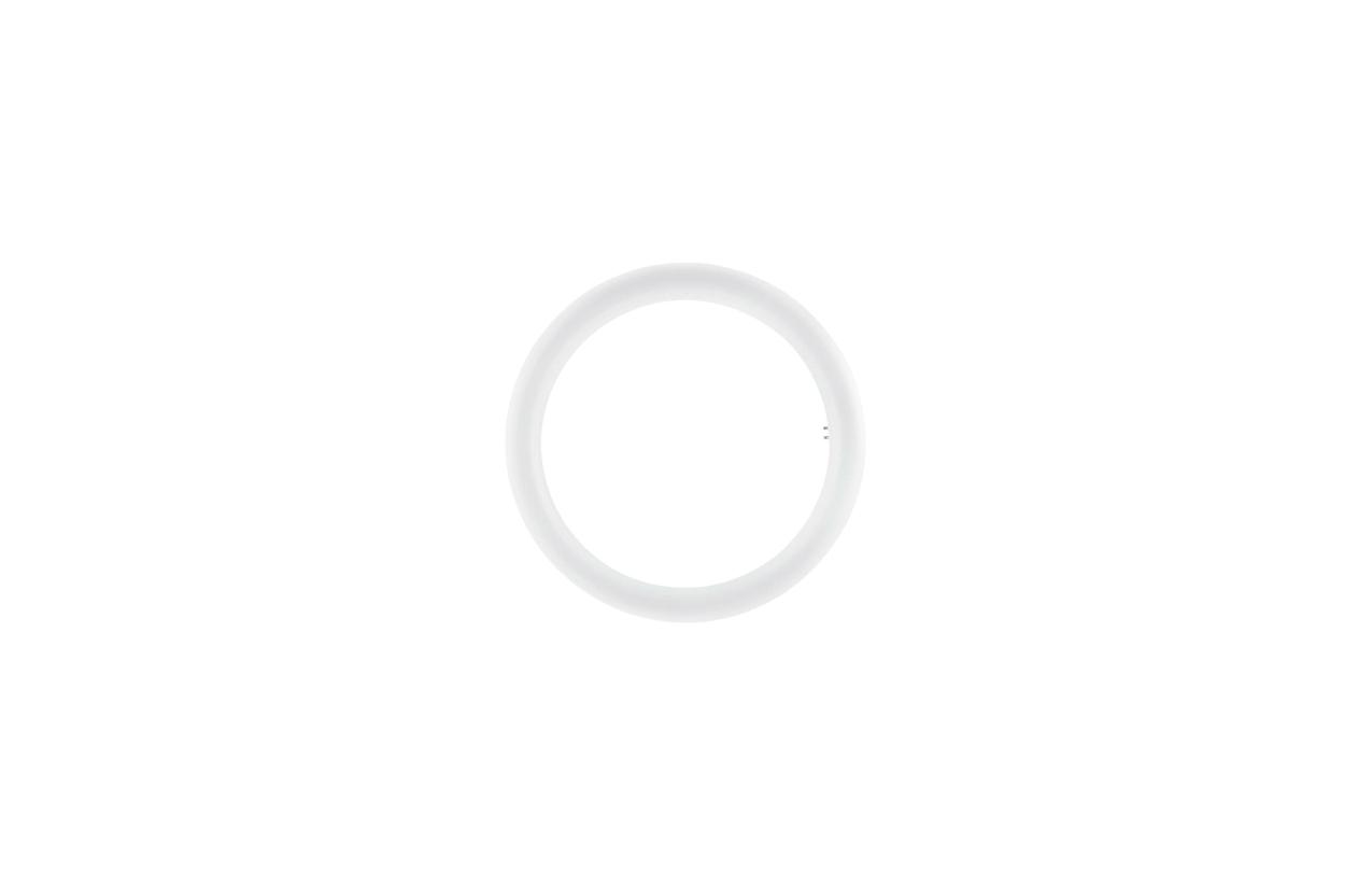 Lâmpada LED circular T9 20W 6500K Ø300mm (branco frio)