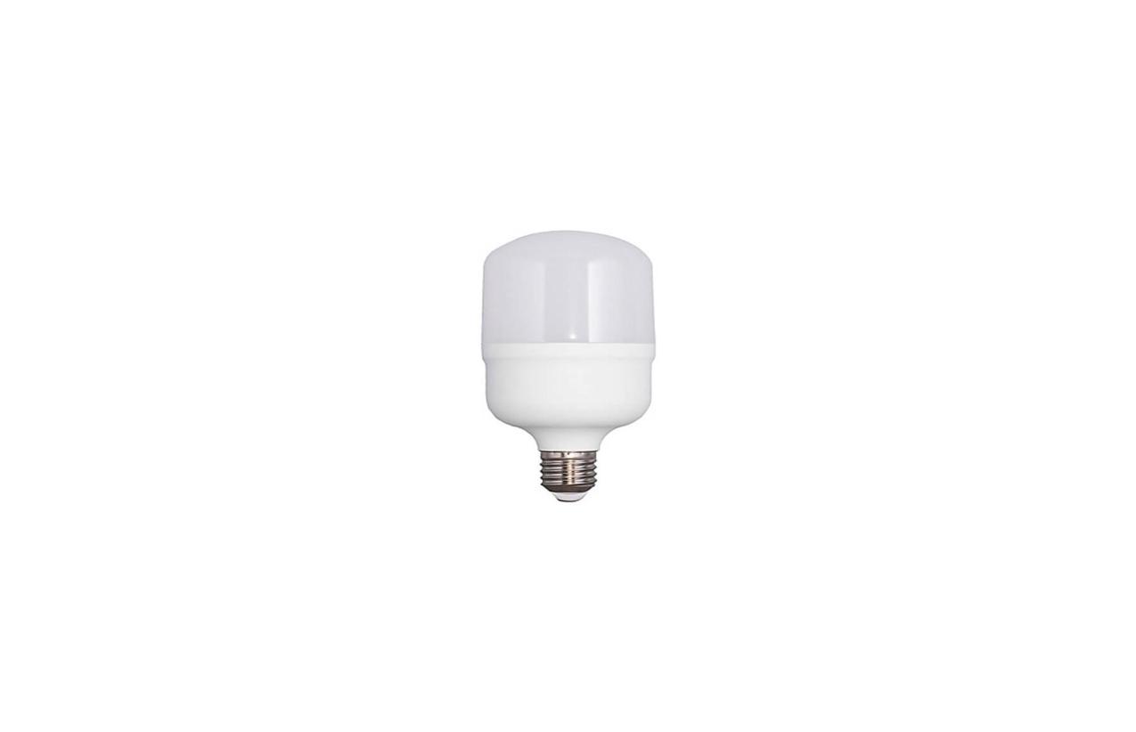 Lâmpada LED T100 E27 30W 4000K (branco neutro)