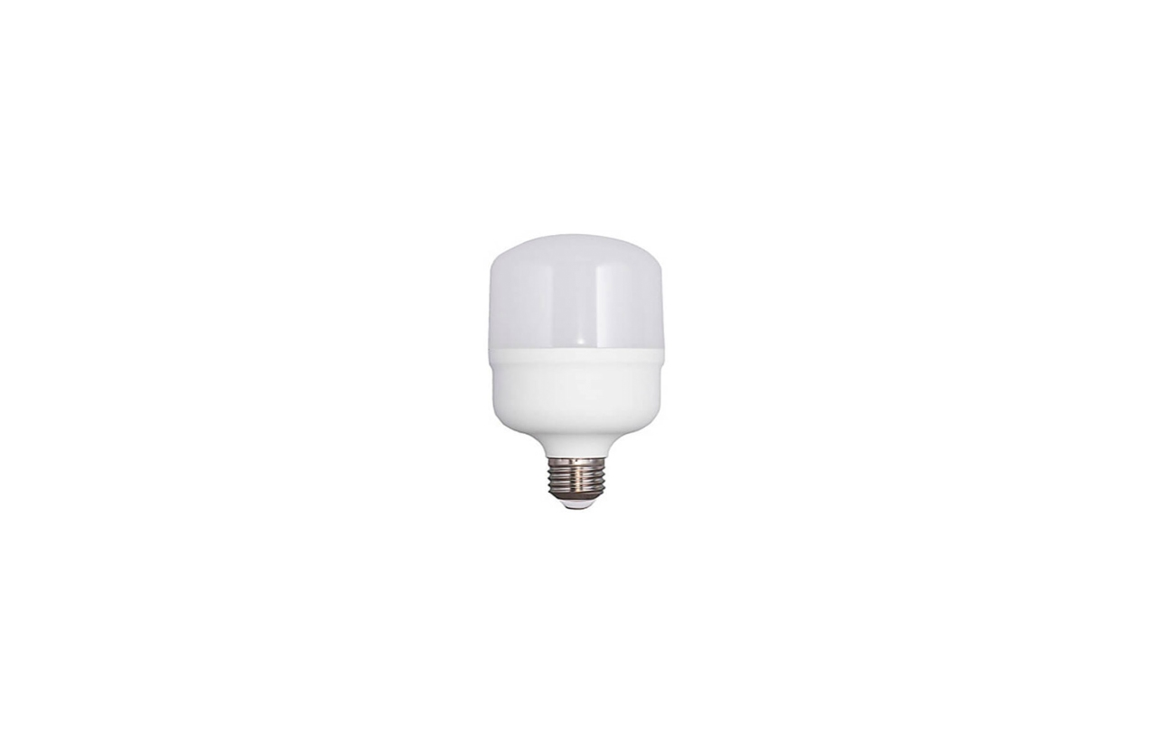 Lâmpada LED T100 E27 30W 6500K (branco frio)